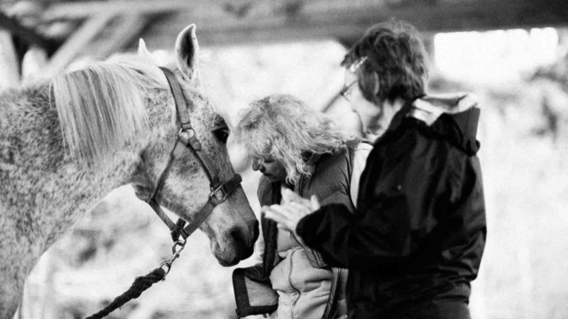 Rio-LA-Lynne-messaging Hug a Horse Program for Seniors