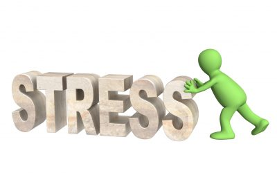 The Importance of Emotional Health for Leaders: Enduring Under Stress