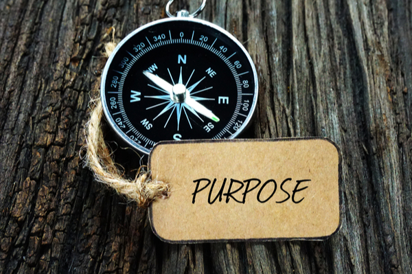 The Quest for Leadership Purpose